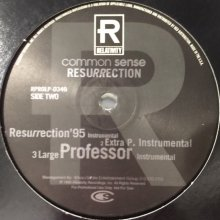 他の写真2: Common Sense - Resurrection (US Promo !!) (12'')