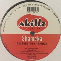 Shameka  - Reasons Why (Remix) (12'')