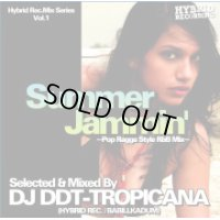 DJ DDT-Tropicana - Summer Jammin' -Pop Ragga Style R&B Mix- (Mix CD)