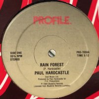 Paul Hardcastle - Rain Forest (12'')