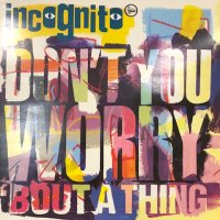 Incognito - Don't You Worry 'Bout A Thing (a/w Colibri (Remix)) (12'')